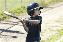 Camp option baseball